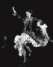 Focus on Flamenco - Softcover